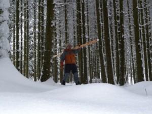Grimpe arbres élagage (10)