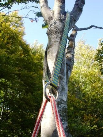 Techniques de grimpe douce dans les arbres